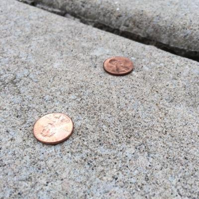 Penny from She Picks Up Pennies